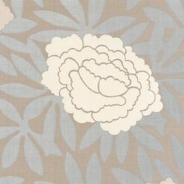 Album 7 - Asuka