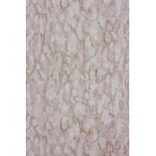 Fontibre - Kershaw Plain - Nina Campbell - NCW4204-03