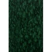 Fontibre - Kershaw Plain - Nina Campbell - NCW4204-06