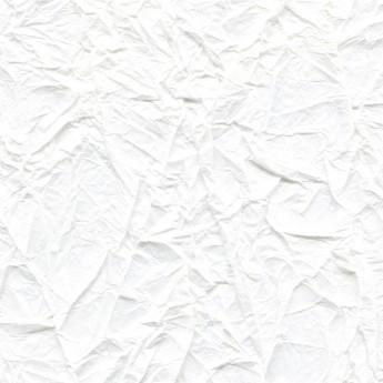 Washi - Splendeurs d'une favorite RM 221 02