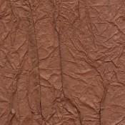Washi - Splendeurs d'une favorite - Elitis - RM 221 35