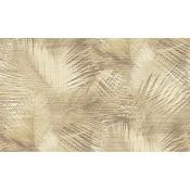 Avalon - Shield - Arte - 31556