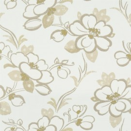 Amrapali - Lotus Flower
