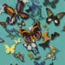 Carnets Andalous - Butterfly Parade PCL015/03