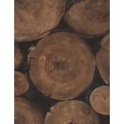 Engineer - Lumberjack - Andrew Martin - timber