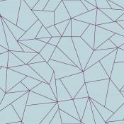 Anima - Fractalisimi - Coordonné - 5900061