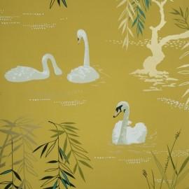 Album 3 - Swan Lake