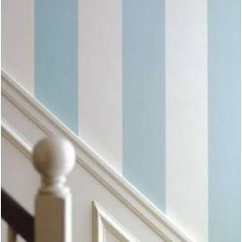 Straight and Narow - Broad Stripe